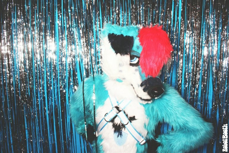 4-8-18-dd-atlanta-marriott-marquis-photo-booth-furry-weekend-atlanta-robot-booth20180408352-x31531957928. Furry Weekend Atlanta Photo Booth- Robot Booth
