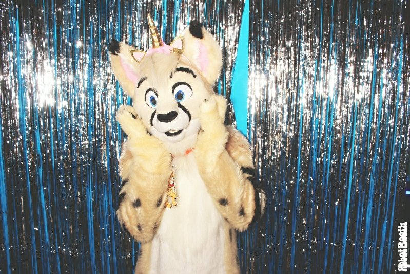 4-8-18-dd-atlanta-marriott-marquis-photo-booth-furry-weekend-atlanta-robot-booth20180408721-x31533478420. Furry Weekend Atlanta Photo Booth- Robot Booth